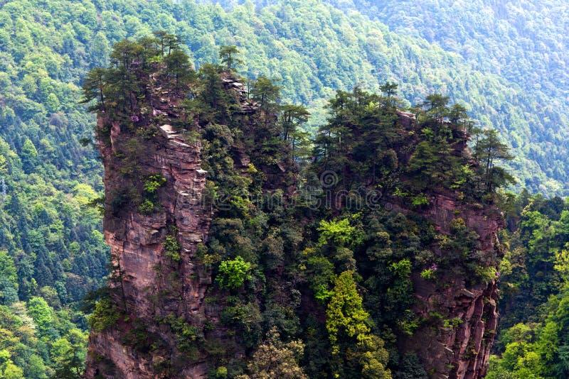 Πάρκο εθνικών δρυμός Zhangjiajie στο επαρχία Hunan, Κίνα στοκ φωτογραφία