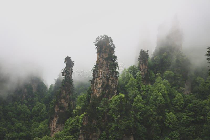 Πάρκο εθνικών δρυμός Zhangjiajie στοκ εικόνες