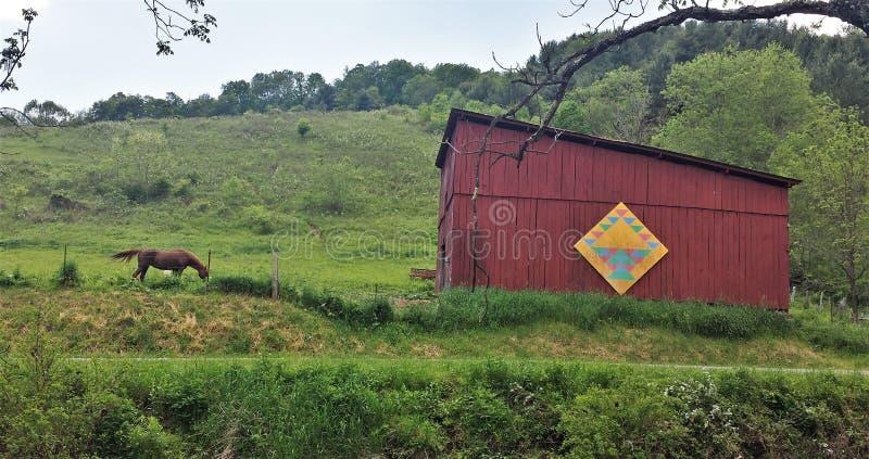 Πάρκο ιχνών αναρριχητικών φυτών του Λάνσινγκ στοκ φωτογραφίες