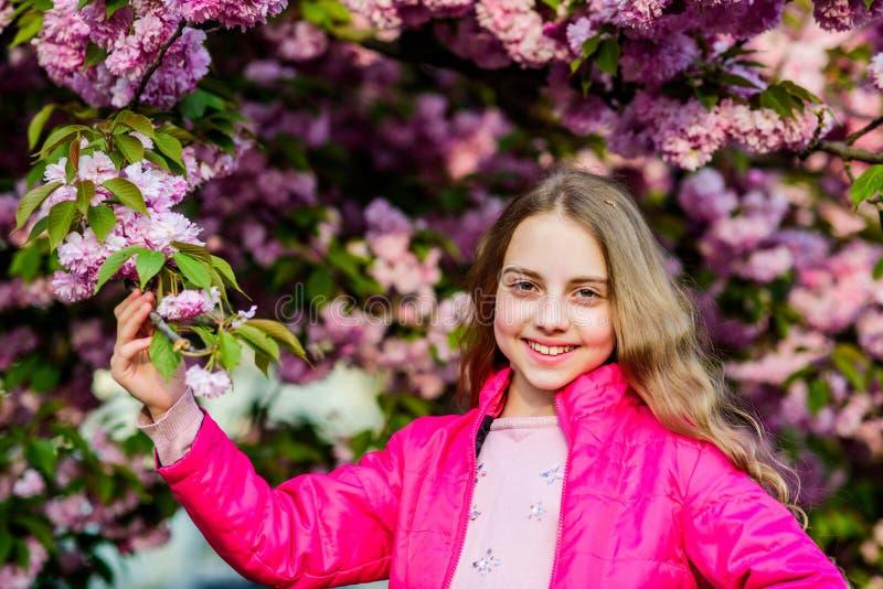 Πάρκο και κήπος Το κορίτσι λίγο παιδί ανθίζει την άνοιξη την άνθιση Απολαύστε τη μυρωδιά της τρυφερής ηλιόλουστης ημέρας άνθισης  στοκ φωτογραφίες με δικαίωμα ελεύθερης χρήσης