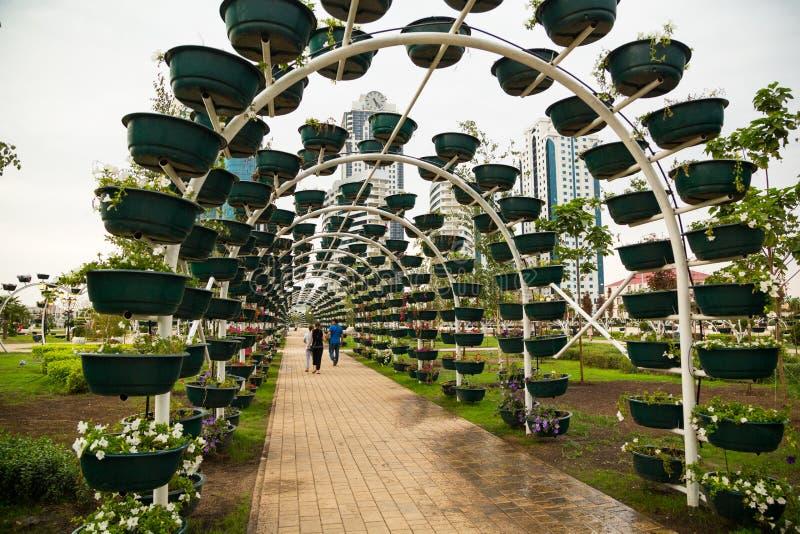 Πάρκο λουλουδιών στο Γκρόζνυ στοκ φωτογραφία
