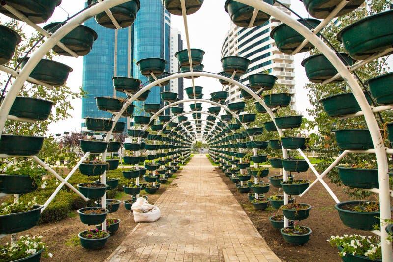Πάρκο λουλουδιών στο κέντρο του Γκρόζνυ στοκ εικόνα με δικαίωμα ελεύθερης χρήσης