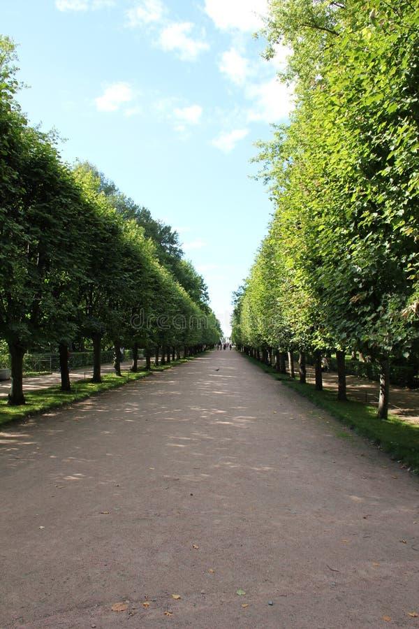 Πάρκο με το μονοπάτι στοκ εικόνα με δικαίωμα ελεύθερης χρήσης