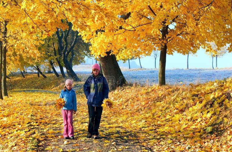 πάρκο οικογενειακού σφ στοκ εικόνες με δικαίωμα ελεύθερης χρήσης