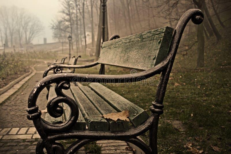 πάρκο ομίχλης στοκ εικόνα με δικαίωμα ελεύθερης χρήσης