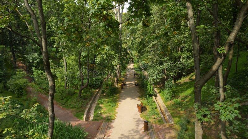 Πάρκο πόλεων στο χρόνο ηλιοβασιλέματος Τοπίο του τομέα χλόης και της πράσινης χρήσης πάρκων περιβάλλοντος δημόσιας ως φυσικό υπόβ στοκ εικόνες