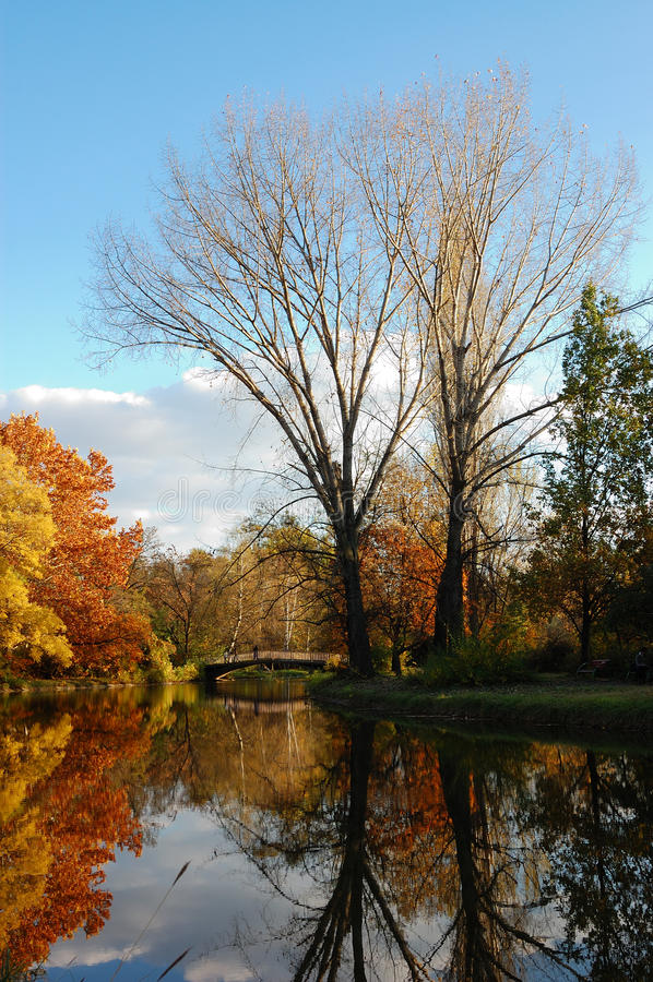 Download πάρκο πόλεων φθινοπώρου στοκ εικόνες. εικόνα από χρυσός - 13185720