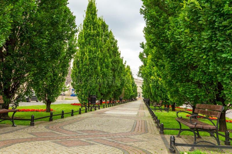 Πάρκο στην πόλη Πολωνία του Πόζναν Άποψη της αλέας και των πάγκων στοκ φωτογραφία με δικαίωμα ελεύθερης χρήσης