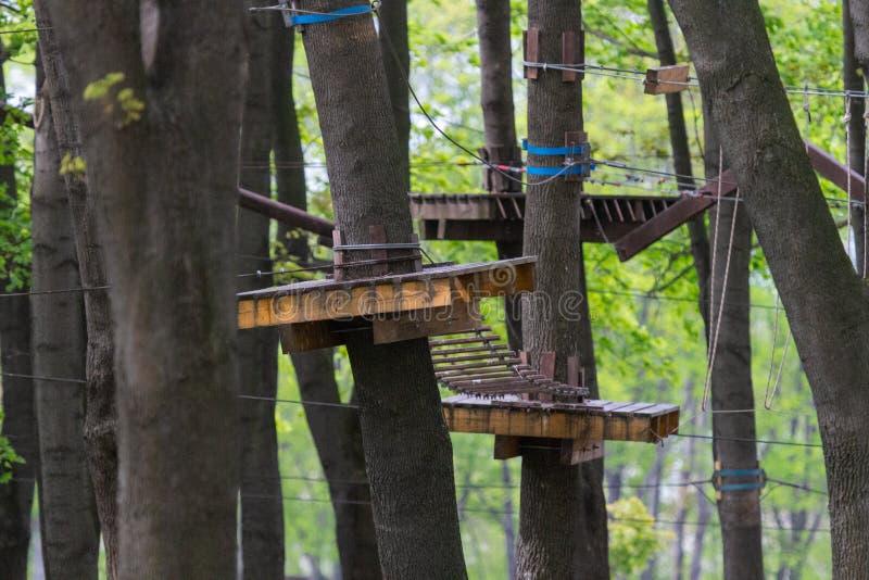 Πάρκο σχοινιών ως δραστηριότητα ελεύθερου χρόνου για μια φιλική επιχείρηση ή μια ομάδα γραφείων στοκ εικόνα