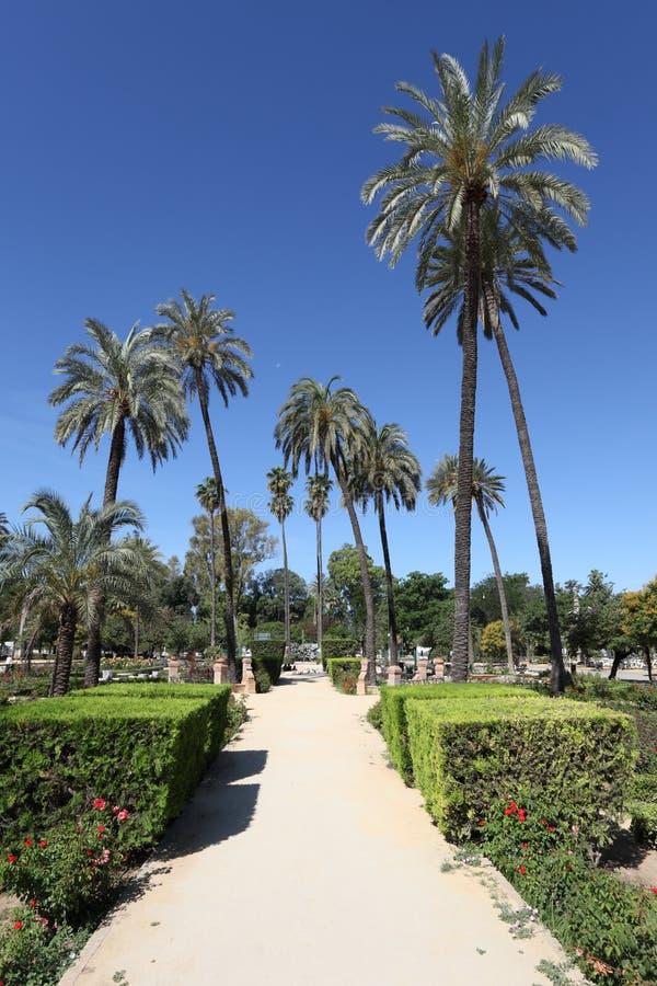 Πάρκο της Μαρίας Luisa στη Σεβίλη, Ισπανία στοκ εικόνες