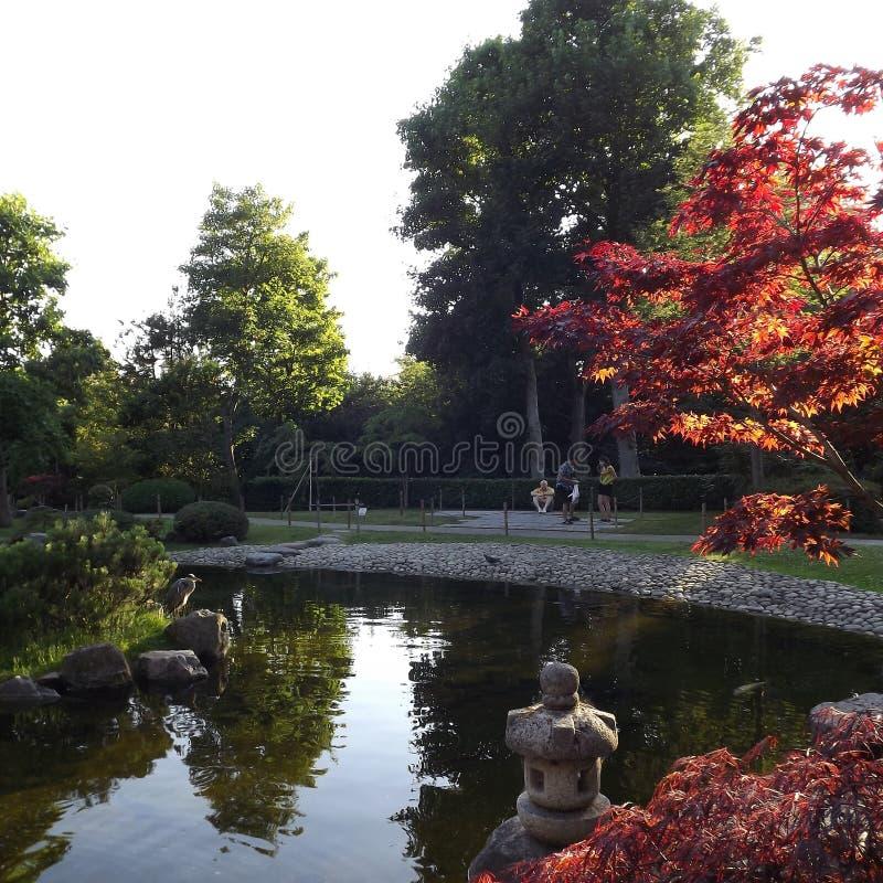 Πάρκο της Ολλανδίας στοκ εικόνες