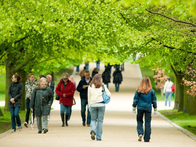Πάρκο του Γκρήνουιτς, Λονδίνο στοκ φωτογραφία με δικαίωμα ελεύθερης χρήσης