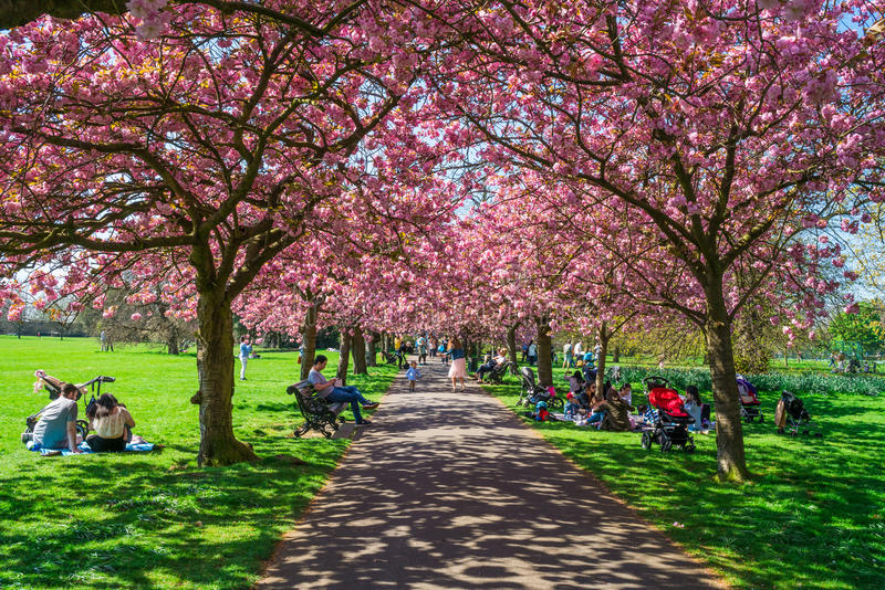 Πάρκο του Γκρήνουιτς, Λονδίνο UK στοκ εικόνα