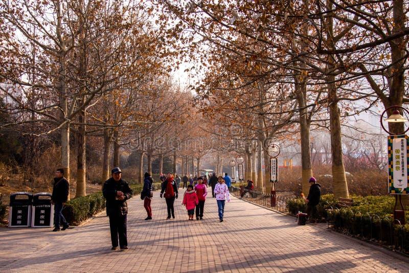 Πάρκο του Πεκίνου στοκ φωτογραφία