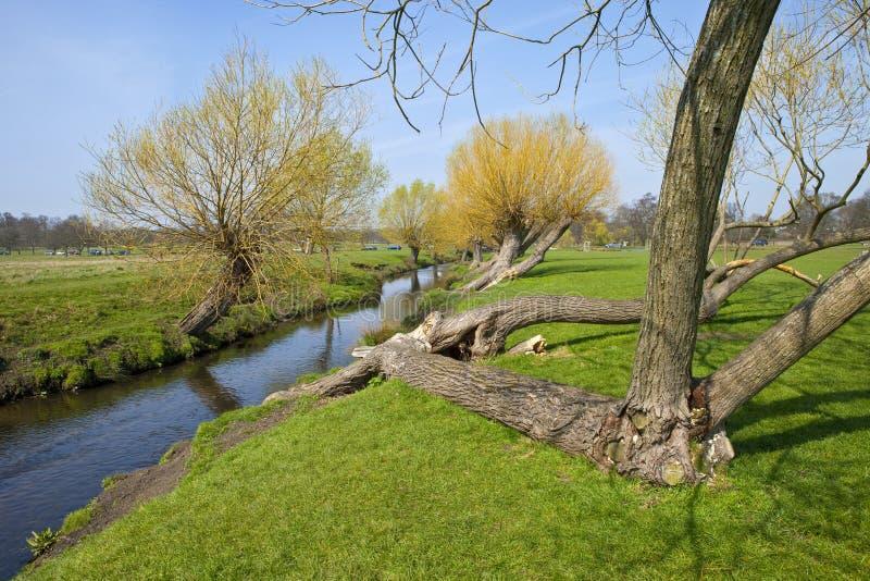 Πάρκο του Ρίτσμοντ στο Λονδίνο στοκ φωτογραφία με δικαίωμα ελεύθερης χρήσης