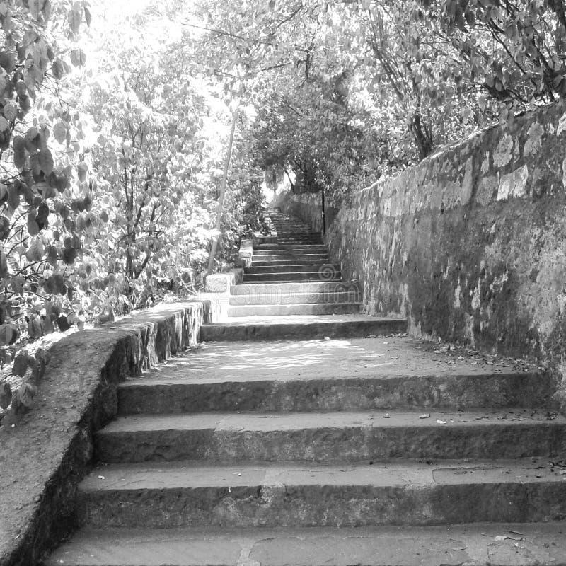 Πάρκο του Castle στοκ εικόνα με δικαίωμα ελεύθερης χρήσης
