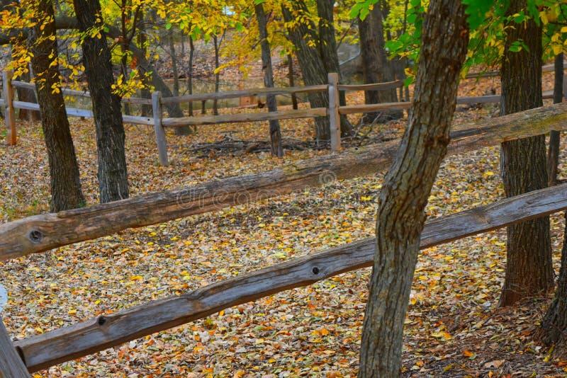 Πάρκο του Martin, Πόλη της Οκλαχόμα NW στοκ εικόνες με δικαίωμα ελεύθερης χρήσης