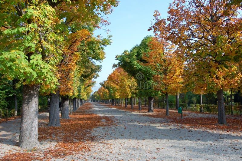 Download πάρκο φθινοπώρου στοκ εικόνες. εικόνα από φθινοπώρου - 17054532