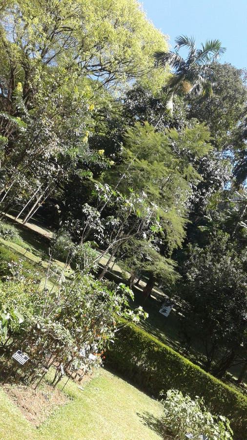 Πάρκο στοκ φωτογραφίες