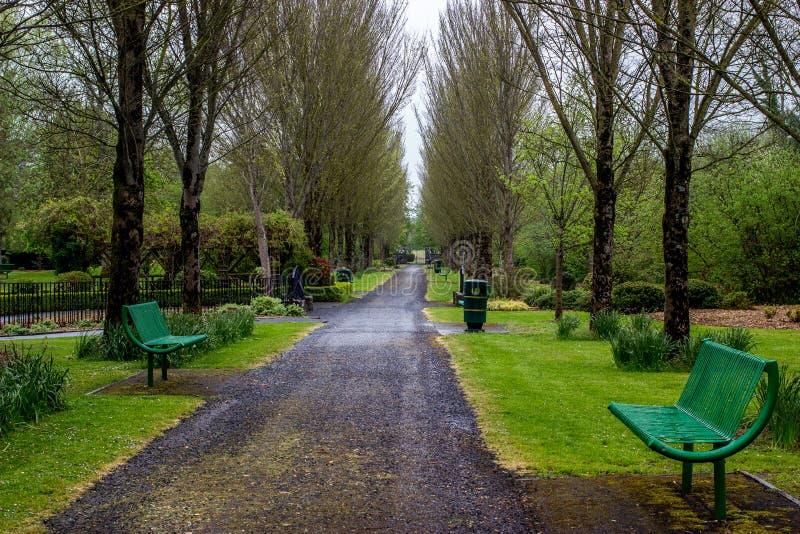 Πάρκο Adare - Ιρλανδία στοκ εικόνα