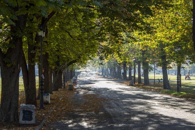Πάρκο Borisova Gradina 3 στοκ φωτογραφία με δικαίωμα ελεύθερης χρήσης