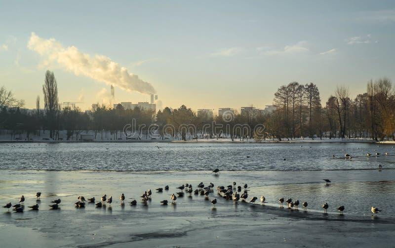 Πάρκο IOR στοκ φωτογραφίες