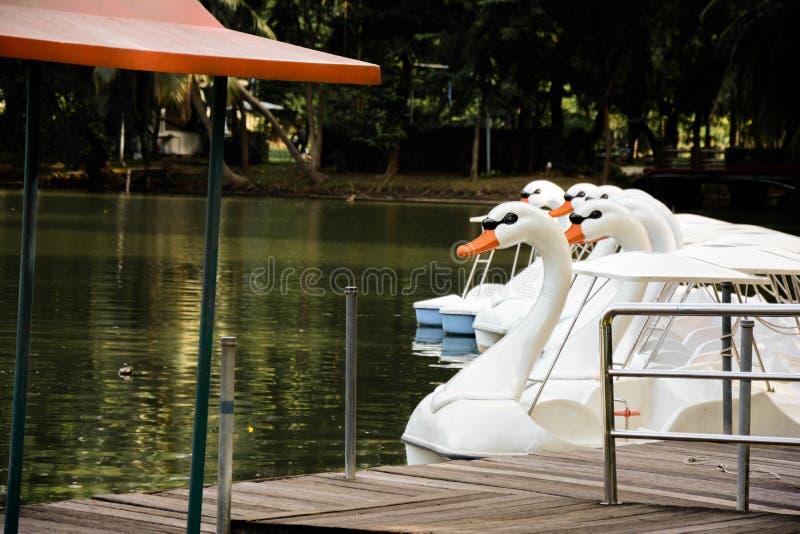 Πάρκο Lumpini στοκ εικόνα με δικαίωμα ελεύθερης χρήσης