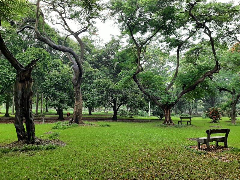 Πάρκο Ramna στοκ εικόνα