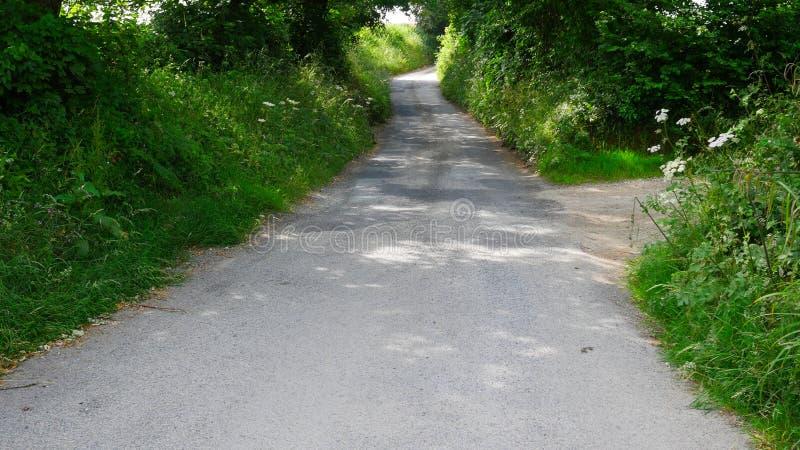 Πάροδοι & δρόμοι πορειών χώρας το καλοκαίρι, κανέναν αυτοκίνητο ή άνθρωπο στοκ εικόνα
