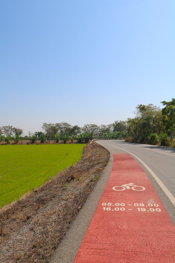 Πάροδος ποδηλάτων και αγρόκτημα ρυζιού στοκ φωτογραφίες