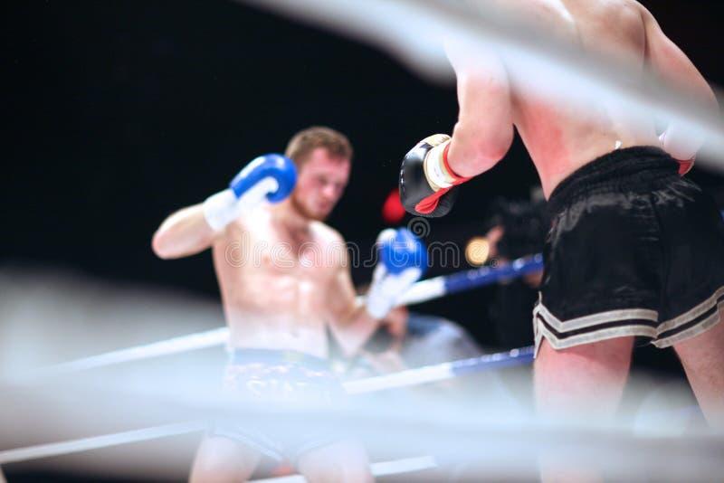 Πάλη MMA στοκ εικόνες