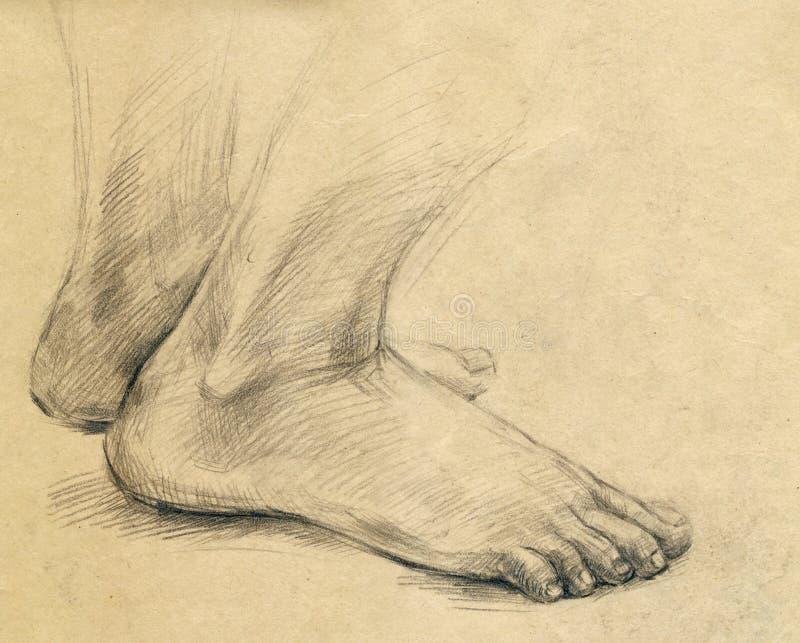 πέλμα ποδιών σχεδίων απεικόνιση αποθεμάτων