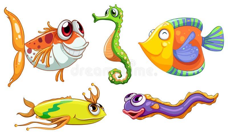 Πέντε πλάσματα θάλασσας απεικόνιση αποθεμάτων