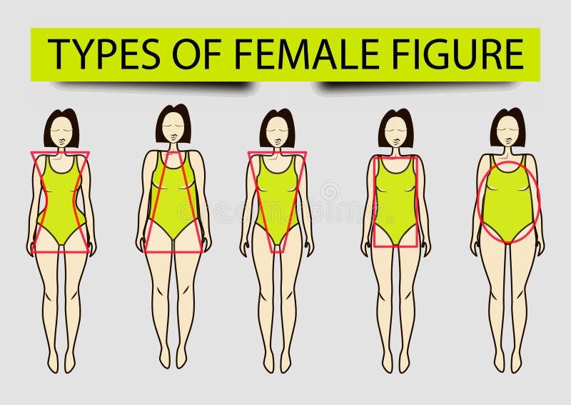 Πέντε τύποι θηλυκών αριθμών, εικόνα απεικόνιση αποθεμάτων
