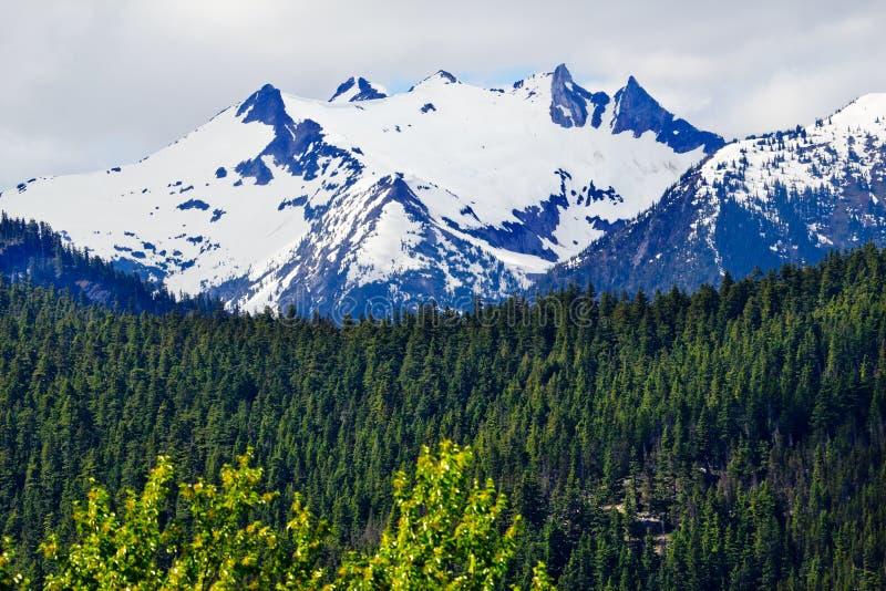 Πέρασμα της Ουάσιγκτον βουνών χιονιού πύργων στοκ φωτογραφία με δικαίωμα ελεύθερης χρήσης
