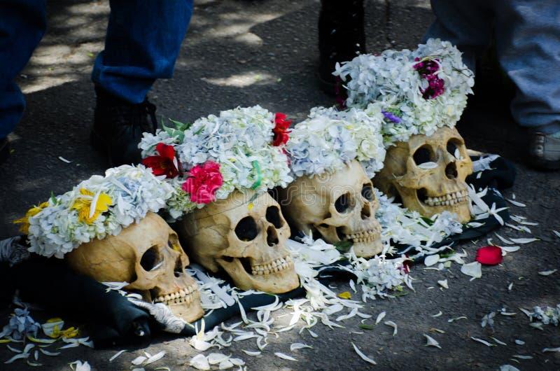 Πέρα από το θάνατο και λίγο περισσότερους στοκ εικόνες με δικαίωμα ελεύθερης χρήσης