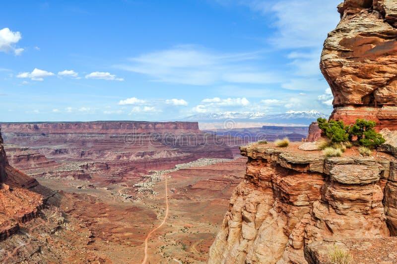 Πέρκα ακρών απότομων βράχων πέρα από το εθνικό πάρκο Canyonlands στοκ φωτογραφίες με δικαίωμα ελεύθερης χρήσης