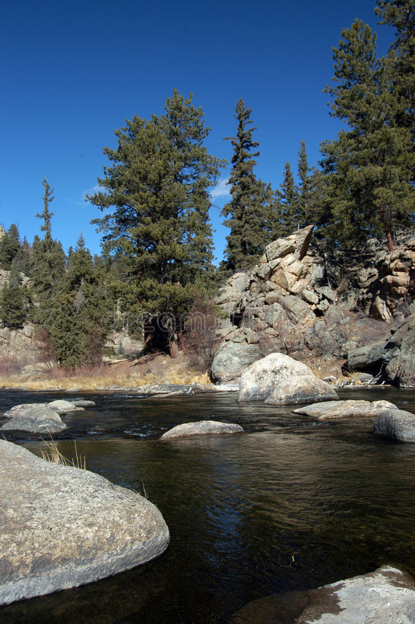 Download πέστροφα ρευμάτων βουνών στοκ εικόνα. εικόνα από καθαρίστε - 383745