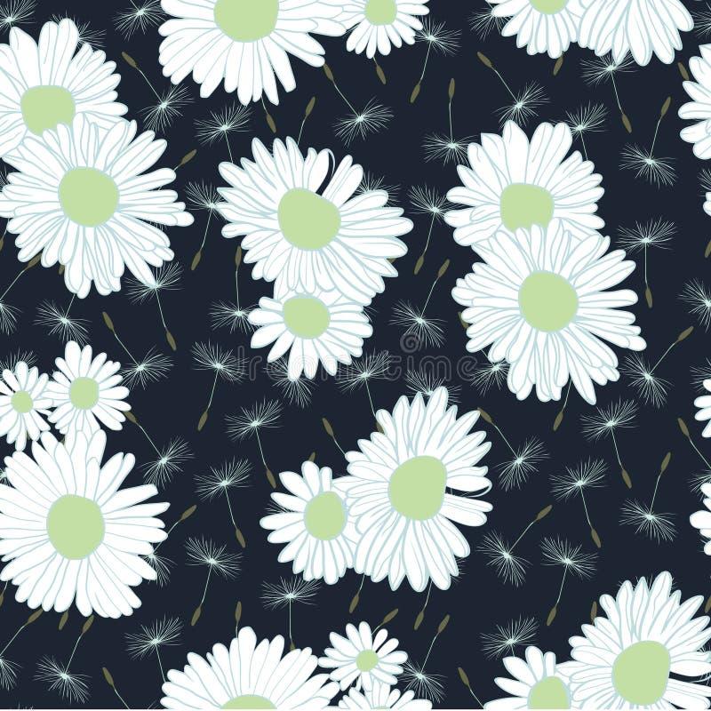 Πέταγμα των σπόρων πικραλίδων και των λουλουδιών μαργαριτών στο σκούρο μπλε υπόβαθρο ελεύθερη απεικόνιση δικαιώματος