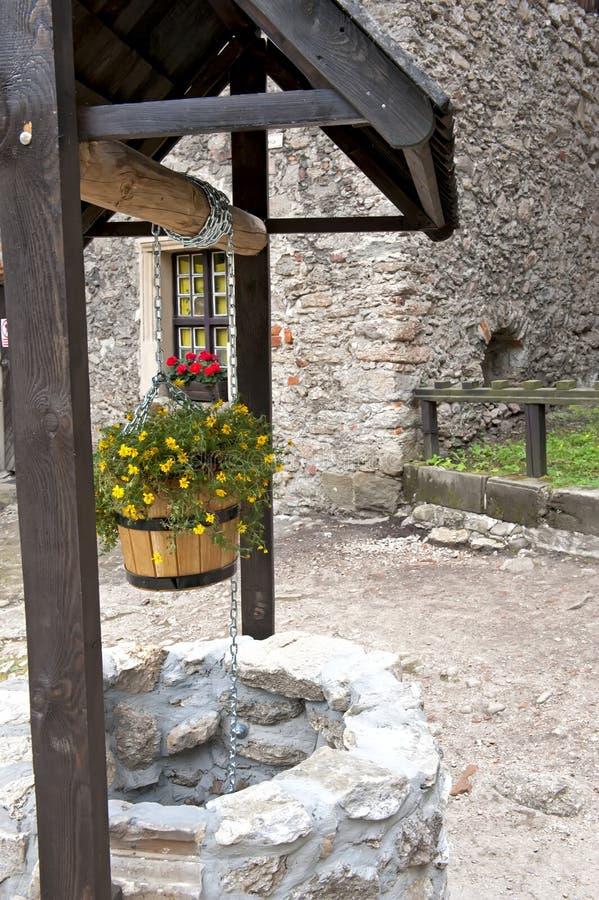 Πέτρα καλά με τα λουλούδια στοκ εικόνες