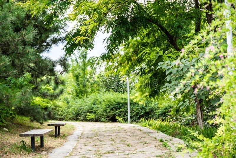 πέτρα μονοπατιών πάρκων κήπων στοκ εικόνες
