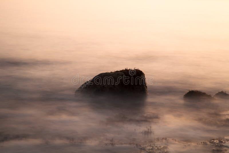 Πέτρα των αλγών στην κυματωγή στο ηλιοβασίλεμα Ρηχό βάθος στοκ εικόνες