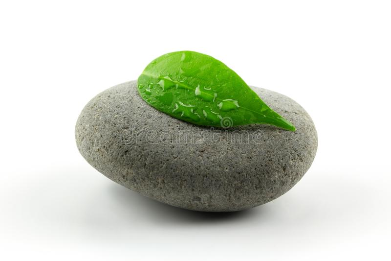 πέτρα φύλλων zen στοκ φωτογραφίες