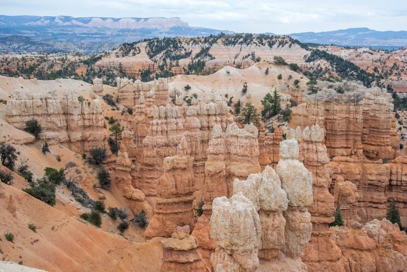 Πέτρες πυραμίδας Hoodoo στο εθνικό πάρκο Γιούτα ΗΠΑ φαραγγιών του Bryce στοκ εικόνα