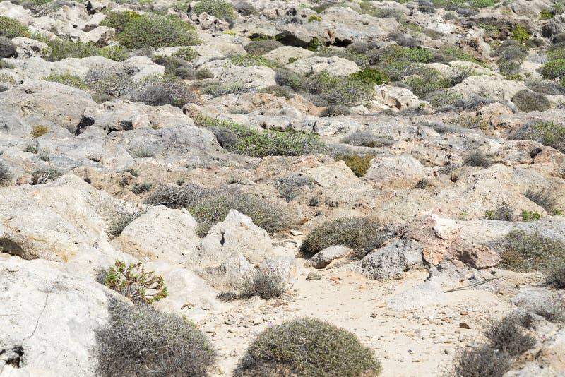 Πέτρες στη βουνοπλαγιά στοκ εικόνες με δικαίωμα ελεύθερης χρήσης