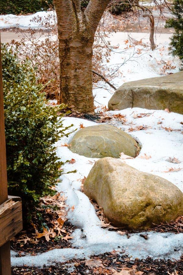 Πέτρες στο χιόνι πίσω από ένα dorm στην πανεπιστημιούπολη IUP στοκ εικόνα