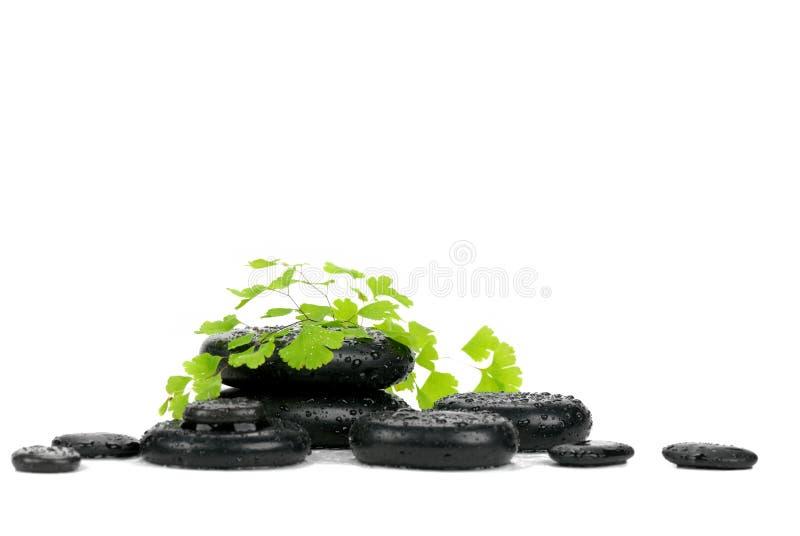 πέτρες φύλλων zen στοκ εικόνες