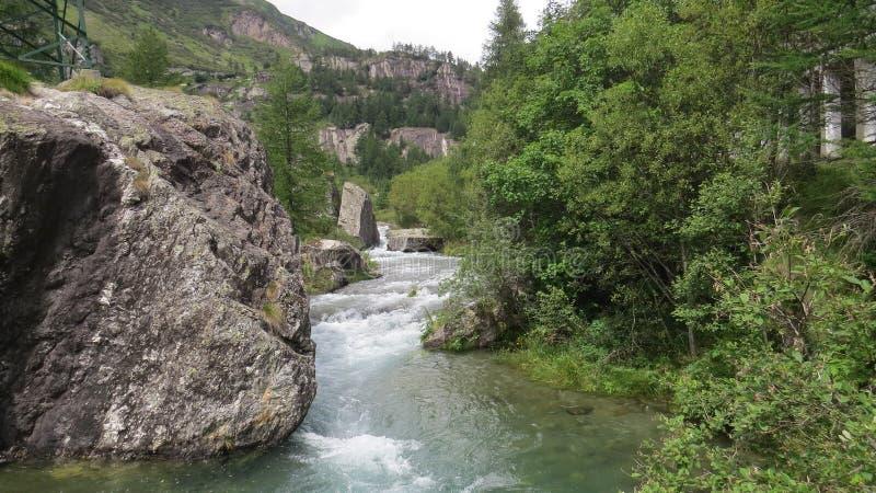 Πέτρινα πράσινα δέντρα ποταμών στοκ φωτογραφία με δικαίωμα ελεύθερης χρήσης