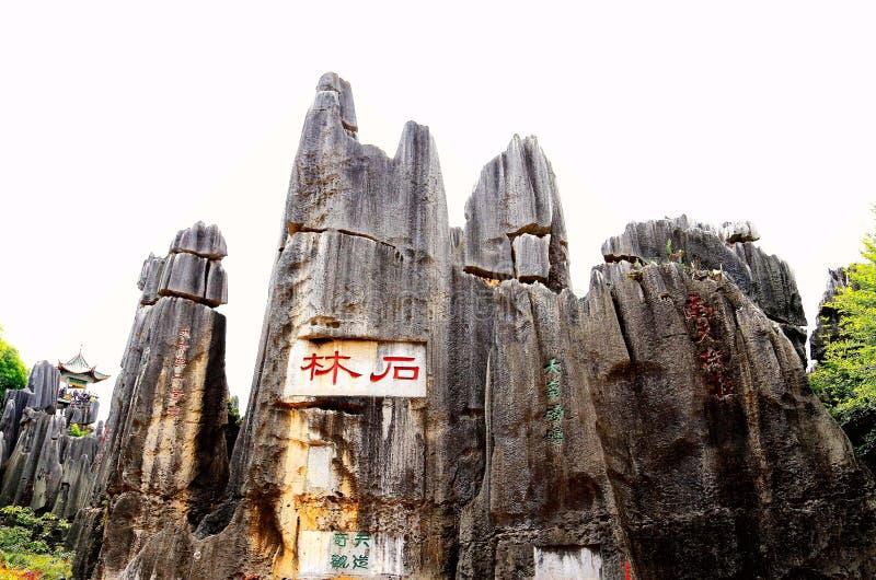 Πέτρινη δασική φυσική περιοχή Kunming στοκ φωτογραφία με δικαίωμα ελεύθερης χρήσης
