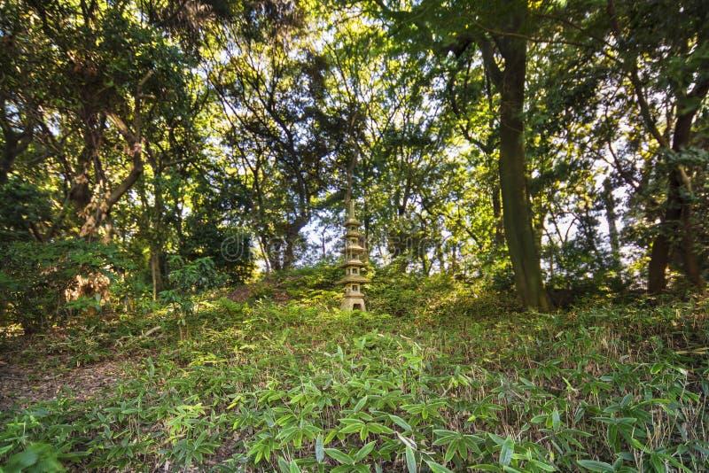 Πέτρινη παγόδα πέντε-ορόφων στο δάσος πεύκων και σφενδάμνων Shinj στοκ εικόνα με δικαίωμα ελεύθερης χρήσης